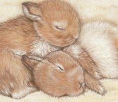 Cute Sleeping Bunnies Original Pastel Painting by Savage Artworks