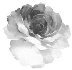 Watercolor Rose - tattoo idea part 1