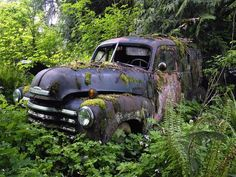 Cool blue truck in the woods