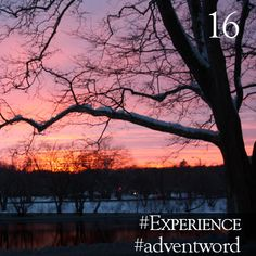 #AdventWord #Experience || Pray a prayer – perhaps a risky or even dangerous one. Ask Jesus to be born in your heart anew. Ask God for a new experience of God's glory – that your heart may be set on fire with love for God and for God's world. Br. Geoffrey Tristram || @SSJEWord: We hope that you will post prayerful images with the #adventword hashtag on Twitter, Facebook and Instagram to create a Global Advent Calendar. Check out www.aco.org/adventword.cfm & see what others are posting.