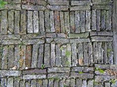 """""""Brick bookcase"""" i.e., brick path...Photo by Jim Forest"""