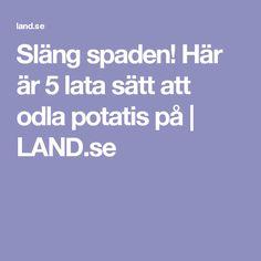 Släng spaden! Här är 5 lata sätt att odla potatis på   LAND.se