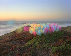 Thomas Jackson's Emergent Behavior is a series of photographs of everyday objects in hovering installations, inspired by self-organizing systems in nature. Turkey In Roaster, Oregon Dunes, Muir Beach, Photography Collage, Kool Aid, Installation Art, Tulle, Landscape, Abstract