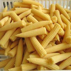 El 'choclito' o 'baby corn' es un producto con alta demanda ...