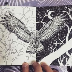 Day and Night - Owl. Moleskine Black and White Ink Drawings. By Francisco Del Carpio.