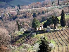 san gimignano -- tuscany