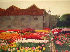 Dutch Manor House With Tulip Fields... 1909 Book Illustration