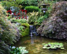 Japonské zahrady fotogalerie inspirace - Bydlení homezin.cz
