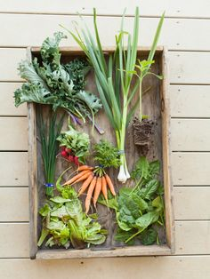 spring farm share // serenbe farms // photo by ali harper Wedding Buffet Food, Wedding Reception Food, Growing Vegetables, Fruits And Veggies, Vegetables Garden, Veggie Art, Wedding Food Stations, Wedding Appetizers, Farm Photo
