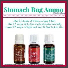 Pinning this to remember next time the nasty stomach bug tries to visit our home. Young Living Essential Oils for Stomach Bug/Flu For more information on purchasing Young Living Oils contact me. Thieves Essential Oil, Essential Oil Uses, Natural Essential Oils, Natural Oils, Pure Essential, Natural Healing, Young Living Oils, Young Living Essential Oils, Essential Oil For Stomach Bug