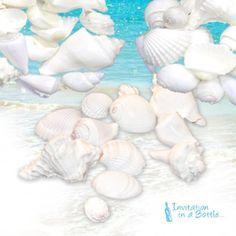 "White Wedding Seashells - Large 1""-3"" each (100 Shells) InvitationInABottle.com http://www.amazon.com/dp/B00DKAG330/ref=cm_sw_r_pi_dp_QmTRub01KEPTJ"