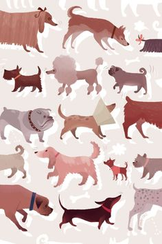 Dog Sniffs (2008) by Joey Chou
