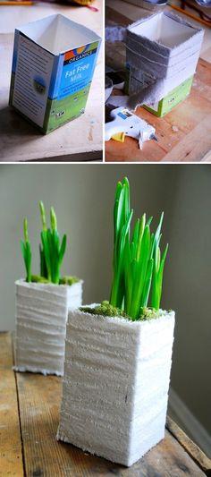 Linda planta hecha de un cartón de leche!