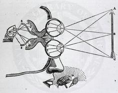 Descartes1.jpg (725×575)