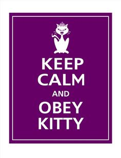 Keep Calm and OBEY KITTY Poster 11X14 Grape Featured by PosterPop, $12.95