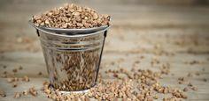 Céréales méconnue, sans gluten, donc bien digeste, le sarrasin présente cependant de nombreux intérêts pour l'organisme. Un des principaux atouts du sarrasin est qu'il contient des protéines végétales très complètes (avec les fameux acides aminés). Très prisé au Japon, on lui reconnaît des vertus antioxydantes et stimule favorablement l'intestin. On le prépare à l'eau (comme du riz) et on le sert chaud ou froid en salade.