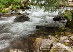 Maroon Bells, Colorado - Maroon Creek is not your typical creek. It is a shallow-running creek, actually more like a beautiful mountain stream, with many small waterfalls and colorful rocks and fallen trees - Maroon Creek ... Not Your Usual Creek   Show Me Nature Photography