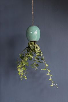three trends in one - Hanging, Emerald Green & Hague Blue