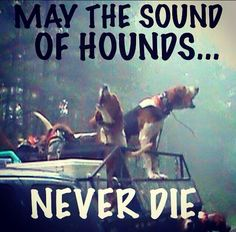 May the sound of the hounds never die. #houndhunting