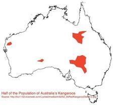 Where half of Australia's kangaroos live.