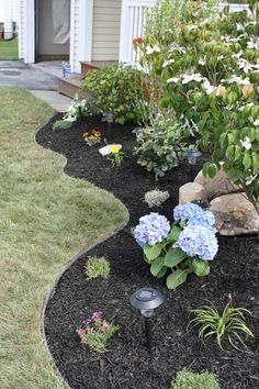 front yard curved beds landscaping - nice!