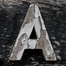 From the Edinburgh Zoo, Edinburgh, Midlothian, Scotland, UK / Leo Reynolds Letter N Words, Letter Art, Alphabet Art, Alphabet And Numbers, Alphabet Photos, Alphabet Photography, Art Photography, Abc Letra, Venice Map