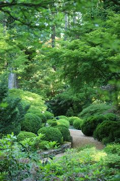 Affordable Beautiful Garden Path For Your Garden 33 50 Easy Garden Path Plans You Can Build To Add Beauty To Your Backyard Path Design, Landscape Design, Design Ideas, Amazing Gardens, Beautiful Gardens, Woodland Garden, Easy Garden, Garden Cottage, Shade Garden