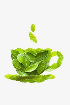 Banner Clip Art, Coffee Shop Logo, Ecology Design, Leaf Crafts, Spring Crafts For Kids, Pressed Flower Art, Green Art, Autumn Art, Leaf Art