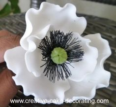 Learn how to make gumpaste poppies with these easy to follow step by step instructions and pictures.