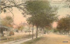 Denton Street Gainesville Texas Hand Colored Postcard 12250   eBay