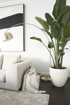 Mandy Capristo's favorite place: the lounge area in the living room with modern art and Strelitzia t. wohnzimmer pflegeleicht Mandy Capristo's favorite place: the lounge area in the living room with modern art and Strelitzia t… Beige Living Room Furniture, Beige Living Rooms, Couch Furniture, Living Room Carpet, Home Living, Rugs In Living Room, Living Room Decor, Living Room Plants Decor, Beige Couch Decor