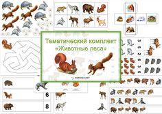 """Непоседы: Тематический комплект """"Животные леса"""""""