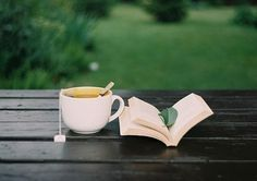 """""""Tea and books : two of life's exquisite pleasures that together bring near-bliss."""" Can't help it, I'm a tea junkie."""