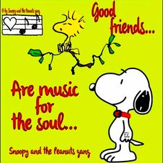 Snoopy and Woodstock Snoopy Images, Snoopy Pictures, Charlie Brown Quotes, Charlie Brown And Snoopy, Peanuts Cartoon, Peanuts Snoopy, Snoopy Videos, Snoopy Comics, Snoopy Wallpaper