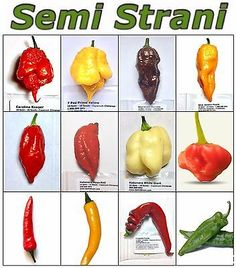 Detox Recipes, Healthy Recipes, Healthy Foods, Types Of Peppers, Pepper Seeds, Hottest Chili Pepper, Comida Latina, Homemade Seasonings, Food Names