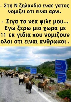 Funny Moments, Haha, Greece, Jokes, Humor, Greece Country, Husky Jokes, Ha Ha, Memes