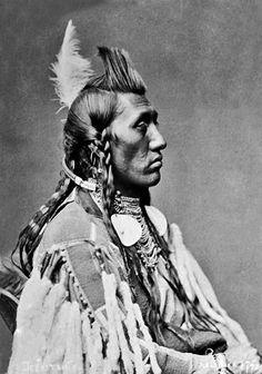 Crow Chief Pretty Eagle - Dee-kit-shis 1880