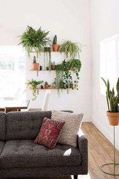 Home Interior Livingroom How to Create a Killer Garden Wall in Your Apartment.Home Interior Livingroom How to Create a Killer Garden Wall in Your Apartment Apartment Plants, Apartment Kitchen, Apartment Backyard, Green Apartment, Apartment Walls, Living Room Apartment, Bohemian Apartment, Apartment Gardening, Apartment Interior