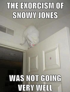 The Exorcism of Snowy Jones
