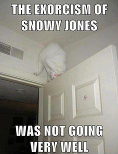 The Exorcism of Snowy Jones