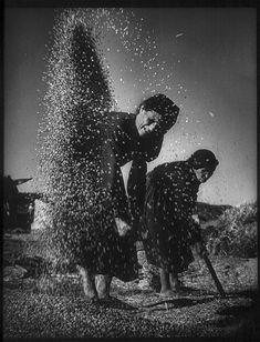 1950 Aventando el trigo en la era, Villa de Deleitosa, Cáceres, España* _ by W. Eugene Smith