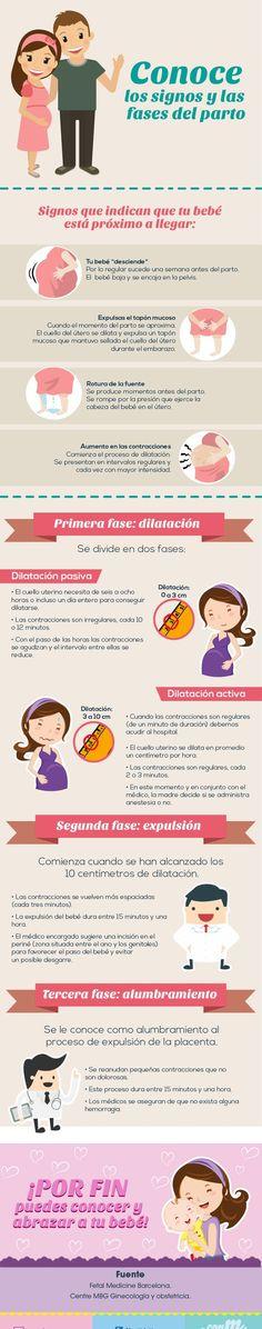 ¿Cuáles son los signos y fases del parto?