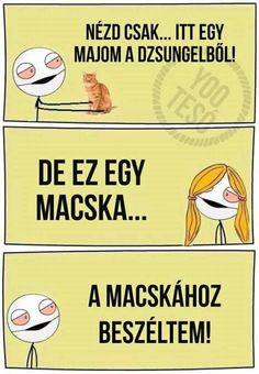 A macskák is jobbak mint néhány ember! Funny Fails, Funny Jokes, Funny Moments, Pranks, Funny Photos, Sarcasm, Haha, Geek Stuff, Entertaining