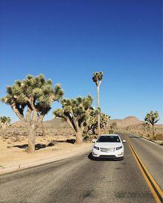 Road Trip. #Volt