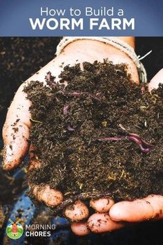 Compost How to Build a Worm Farm at Home (and Monetize it for Profit) - Worms are easy to raise and can be sold for profit. Learn how to build a worm farm from scratch at your own home. Garden Compost, Hydroponic Gardening, Organic Gardening, Gardening Tips, Aquaponics Diy, Organic Fertilizer, Urban Gardening, Container Gardening, Worm Beds