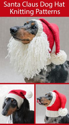 Knitting Patterns for Santa Claus Dog Hats for Christmas Knitting Patterns for Santa Claus Dog Hats for Christmas - These holiday hats are cute and functional and come in versio. Dog Sweater Pattern, Crochet Dog Sweater, Dog Pattern, Snood Pattern, Knitting Patterns For Dogs, Christmas Knitting Patterns, Scarf Patterns, Knitting Projects, Stitch Patterns