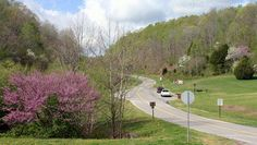 Natchez Trace In Spring: Colorful Budding Trees Natchez Trace, Nashville Trip, Purple Trees, Spring Time, Architecture Art, Good Times, Golf Courses, Scenery, Fun