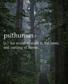 Psithurism ~ the sound of leaves rustling as the wind blows through the trees.