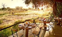 Open to the Kruger National Park and playing host to Africa's Big Five is Motswari Private Game Reserve. Kruger National Park, National Parks, Intimate Games, The Places Youll Go, Places To Visit, Game Reserve South Africa, Tree Camping, Game Lodge, Private Games