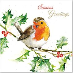 Click to view Little Red Robin - Single Christmas 10 Card Pack